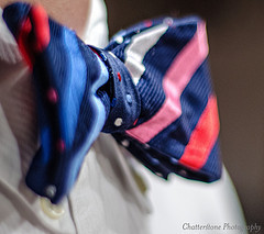 Bow Tie; image CC Grant Frederiksen
