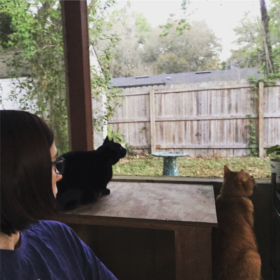 Christy bird watching on back patio with Anna and Flynn